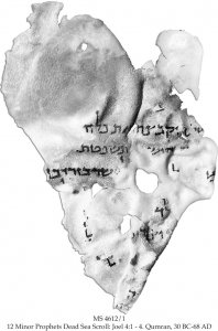 12 Minor Prophets Dead Sea Scroll | MS 4612/1 (1)