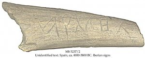 'Atlantis' on Stag Bone | MS 5237-2