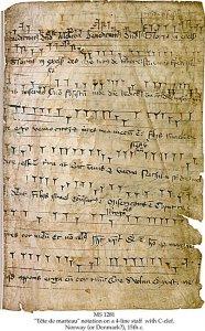 Cantorinus: Tete de Marteau | MS 1281