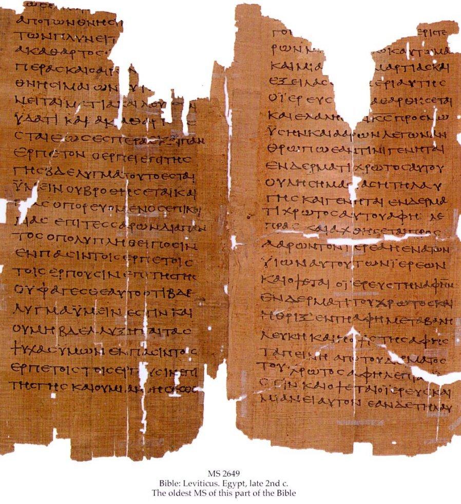 Greek Bible - Leviticus | MS 2649