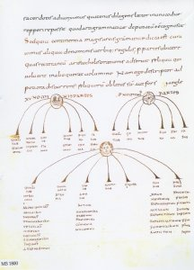 CASSIODORUS: LIBER HUMANIARUM LITTERARUM | MS 1800 (1)