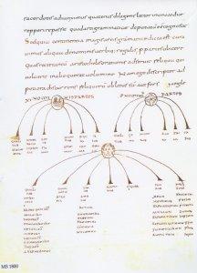 CASSIODORUS: LIBER HUMANIARUM LITTERARUM | MS 1800 (1)