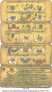 MUDRAS OF THE VAJRADHATUMANDALA 1 | MS 2175