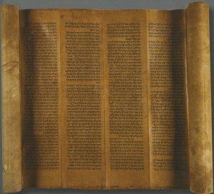 Torah | MS 5567