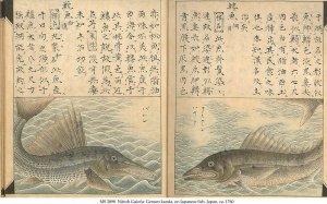 NITTOH GUIOFU: GENSEN KANDA   MS 2898 (1)