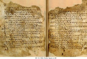 Sahidic Bible | MS 114