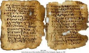 Sahidic Bible | MS1365