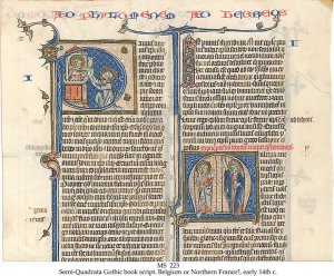 Semi-Quadrata Bible | MS 223