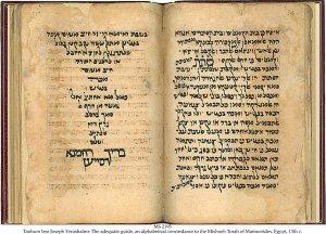 Tanhum Ben Joseph Yerushalmi | MS 2195